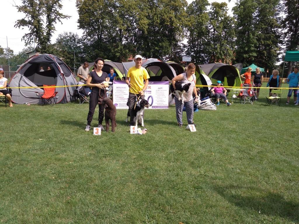 trufel-agility-legnickie-pole